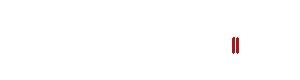 stelkes-logo-white
